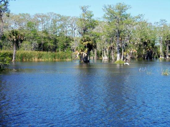 TripAdvisor_Fishing_Guides