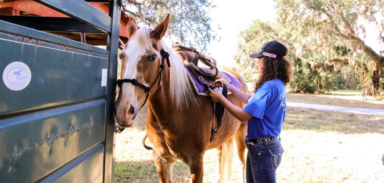 Wagon_Wheel_Horse_Farm